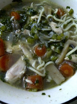 Flavourful Broth of Chicken, Noodles and Vegetables