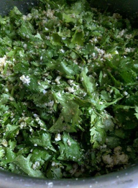 Fresh Coriander, Coconut and Green Garlic Base for Panchkutiyu Shaak