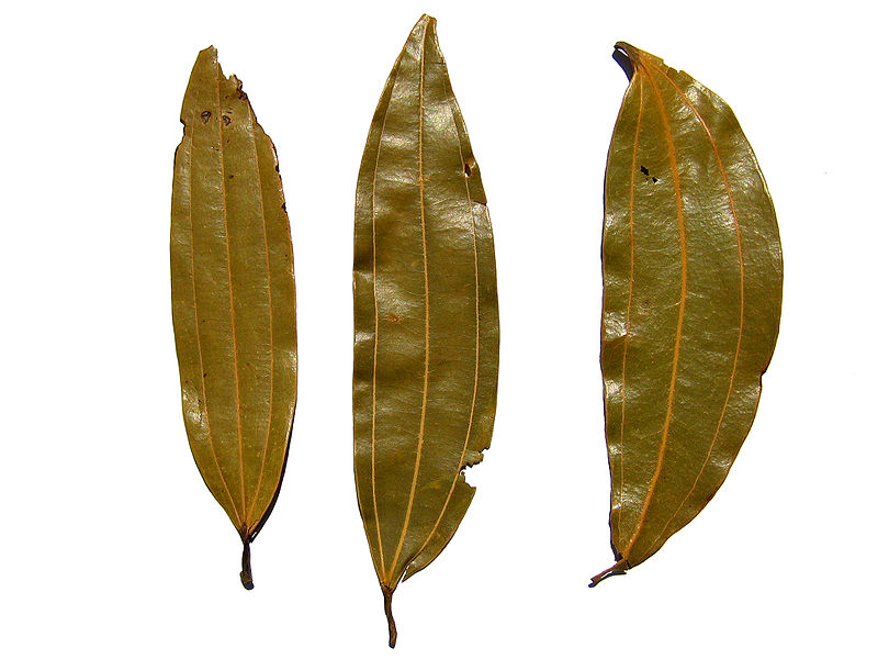 Bay Leaf to Preserve Dry Staple Foods